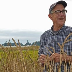 Supporting Great Grains with Dr. Stephen Jones