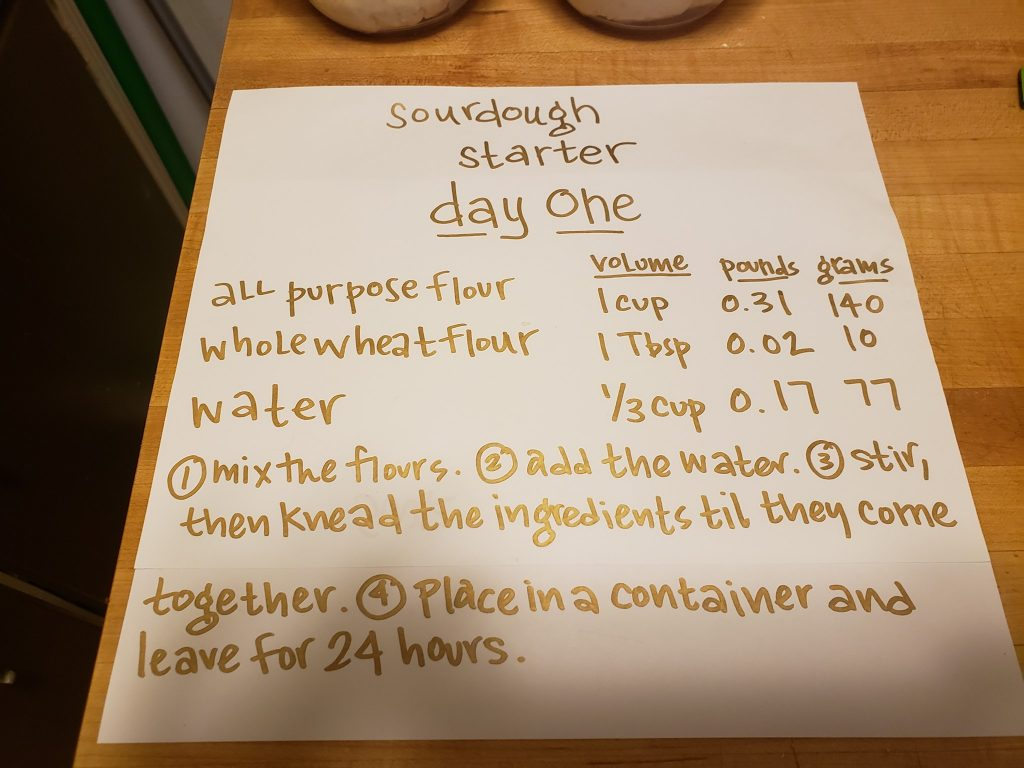 sourdough starter day 1