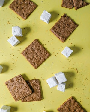 marshmallows and graham crackers virtual classes